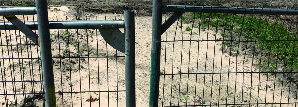 Bomenkap Schiebroekse Park wekt ongenoegen commissie